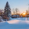Morning Snow in Neighborhood