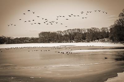 Winter Lake Sepia