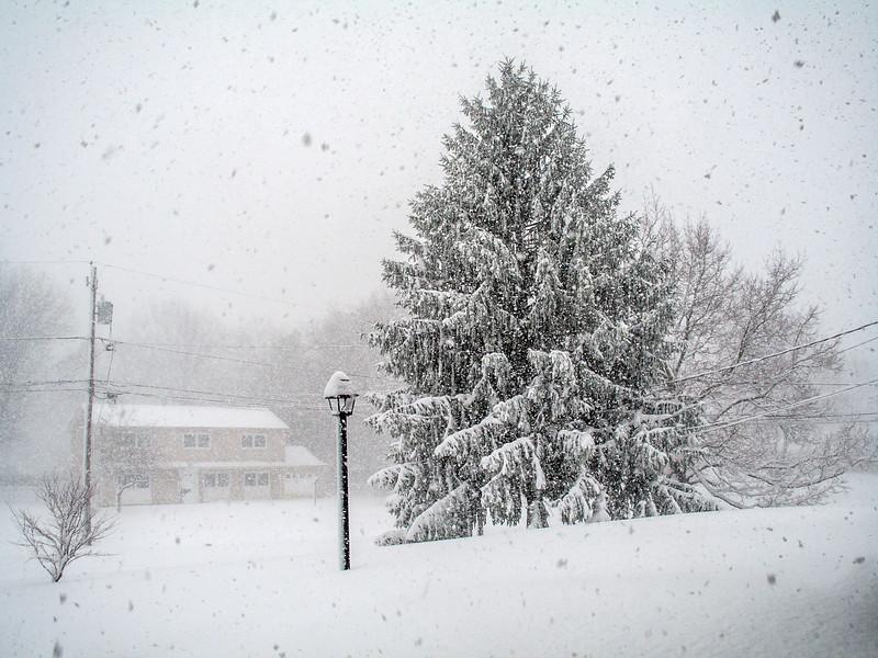 Hard Snow