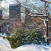 Winter Scene Central Park