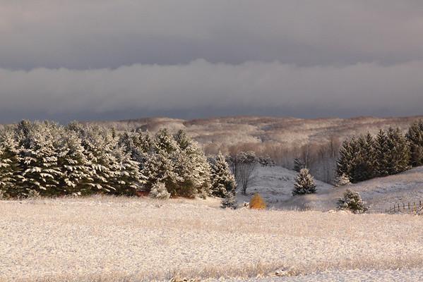 Winter Calls