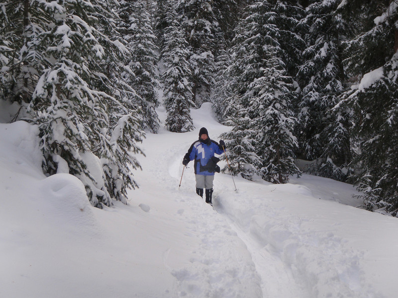 Cross-country skiing at Mill Creek