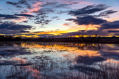 Sunset at Bosque del Apache, NM