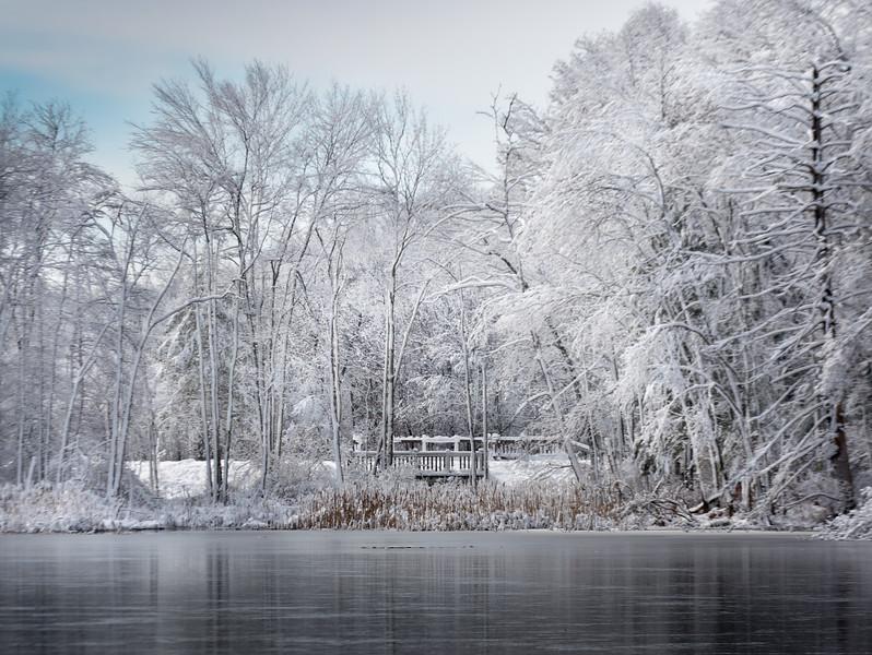 Ice House Pond, Hopkington MA