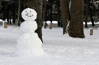 Real Snowman in the Wood