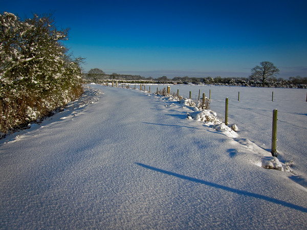 Oxfordshire snowfall
