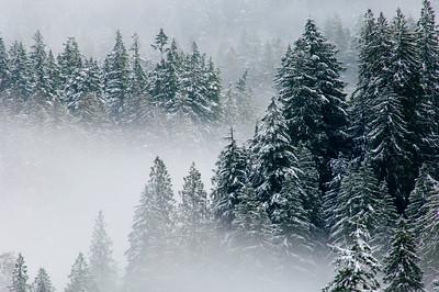 Winter North Cascades 011