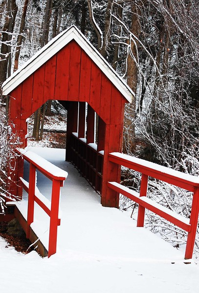 Red-Bridge-5095-B