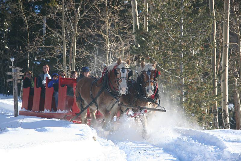 Rocky Mountain sleigh ride