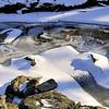 Cold January - Wolftrap Farm National Park - Vienna, Virginia