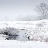 Mann Pond, Norfolk MA Winter