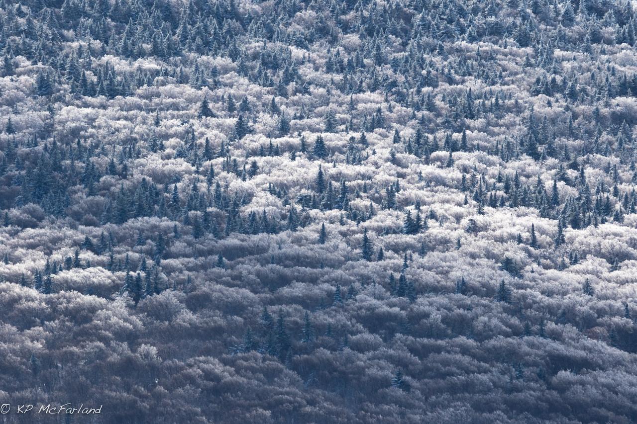 Autumn Snow, Pico, Vermont