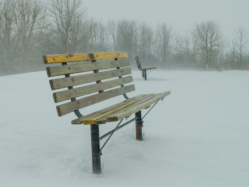Cold Wisconsin day. Snow was horizontal.