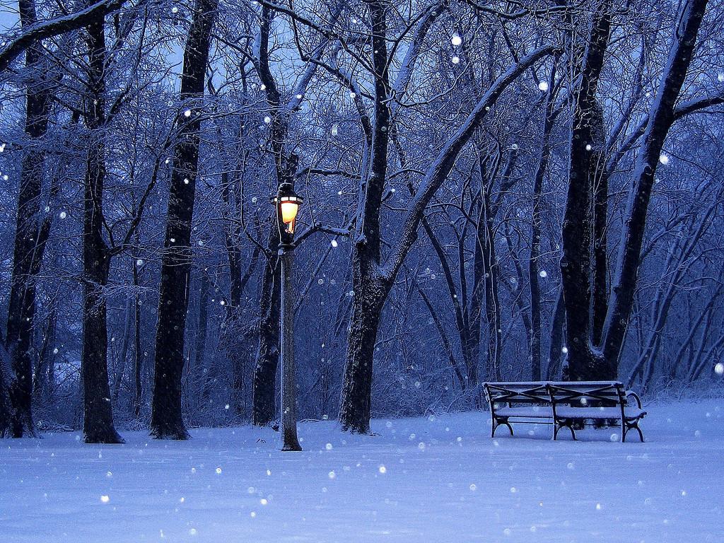 Wisconsin Winter. Lake Park, Milwaukee
