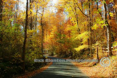 """ Autumn Byways """