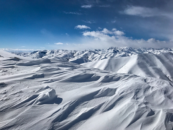 Winter Windblown