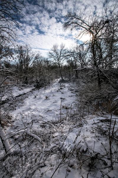 Newly fallen snow  - Jasper County Indiana