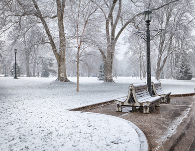 First Snow_1