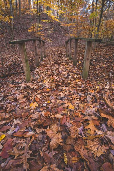 Hardin Ridge State Recreation Area, Monroe County, Indiana.