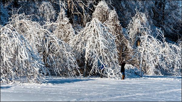Winter Photographer_30-1