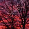 December Sunrise 1