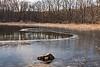 Backwater in winter at Crooked Lake