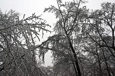 2013 A - Winter Wonder Time