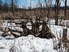Swamp scene with snow