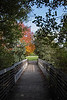 Boardwalk bridge between Furstenberg and Gallup Parks