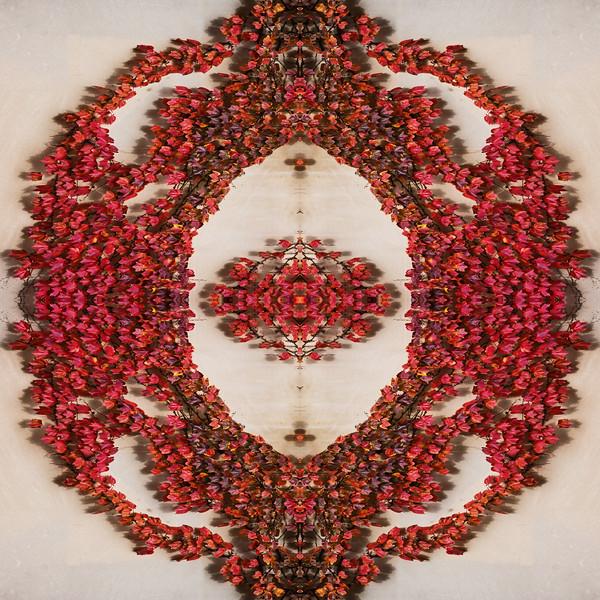 Symmetry from Asymmetry