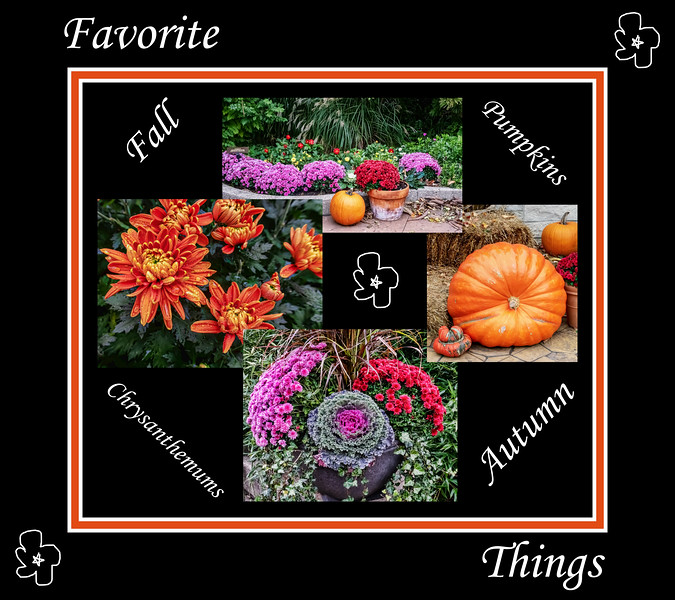Favorite Fall Things