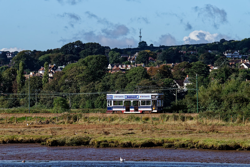 Lightly loaded Tram No. 9, heading for Seaton, on 30th September 2016.