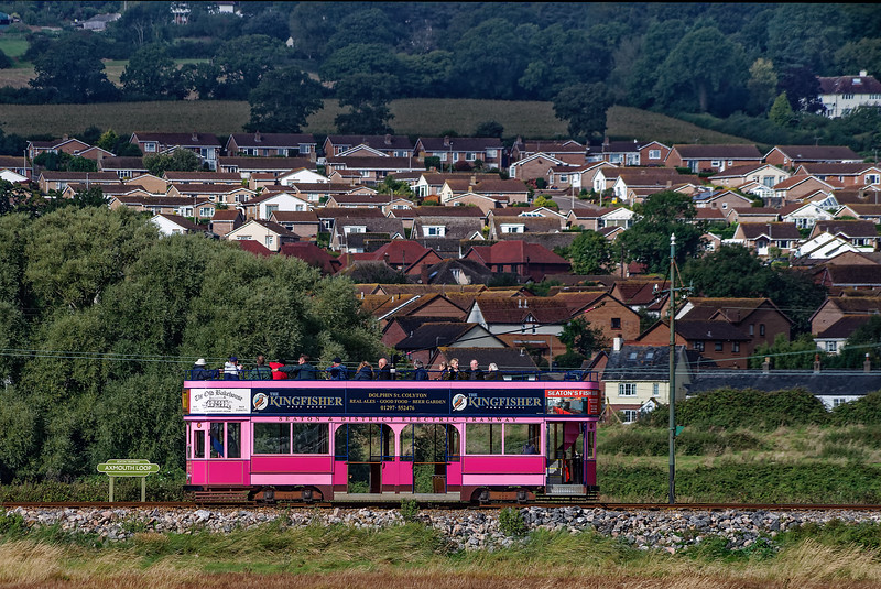Tram No. 11 Heading for Seaton, passes through the Axmouth Loop, <br /> on 25th September 2016.