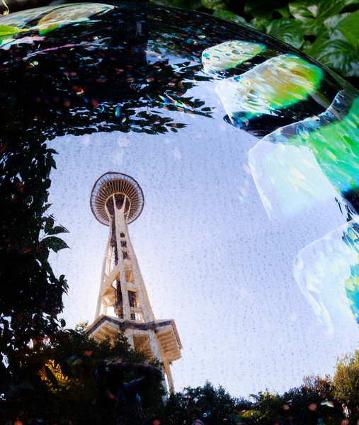 Space Needle Reflection at Chilhuly Gardens