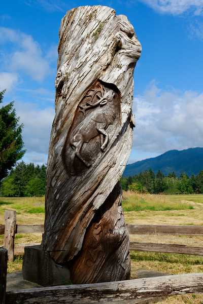 Chainsaw Sculpture, Quinault