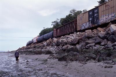Edmonds Beach Train