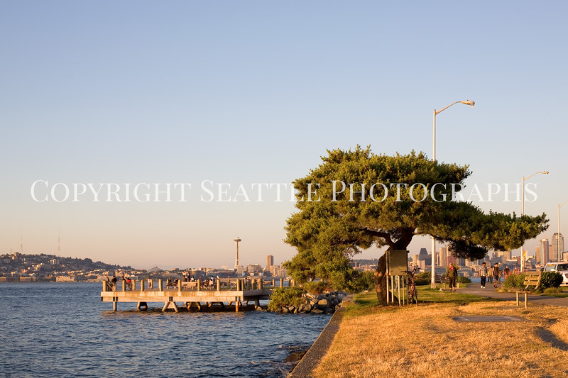 Alki Beach Duwamish Head 105