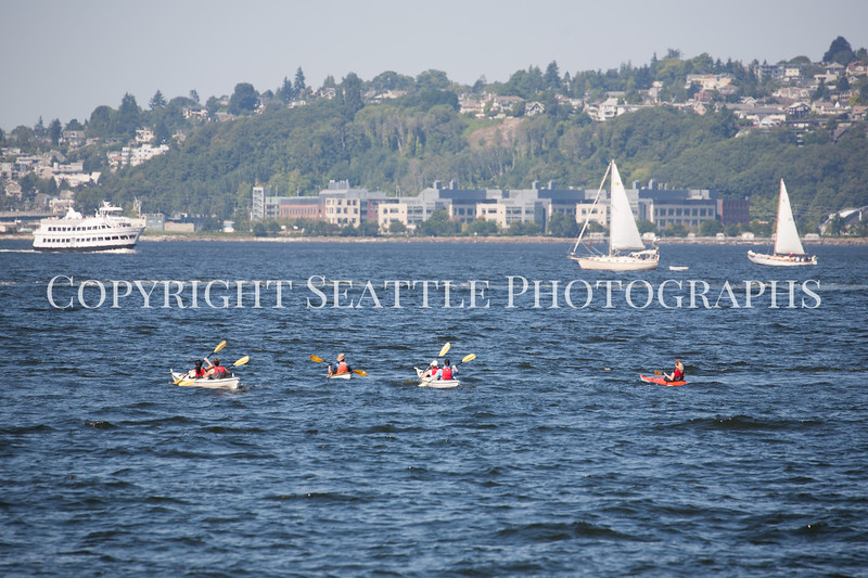Alki Beach Kayaking 107