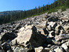 One of the huge boulder fields where the pikas live.<br /> <br /> Jedno z wielkich rumowisk skalnych gdzie zyja piki.