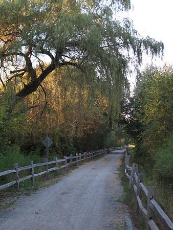East Lake Sammamish Trail