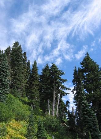 Mt. Rainier National Park,  September-October 2004
