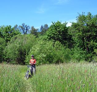 A brief detour into the Stillwater Wildlife Area.