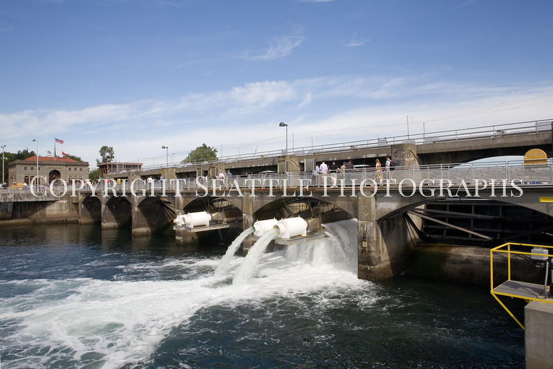 Ballard Locks Spillway 104