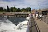 Ballard Locks Spillway 108