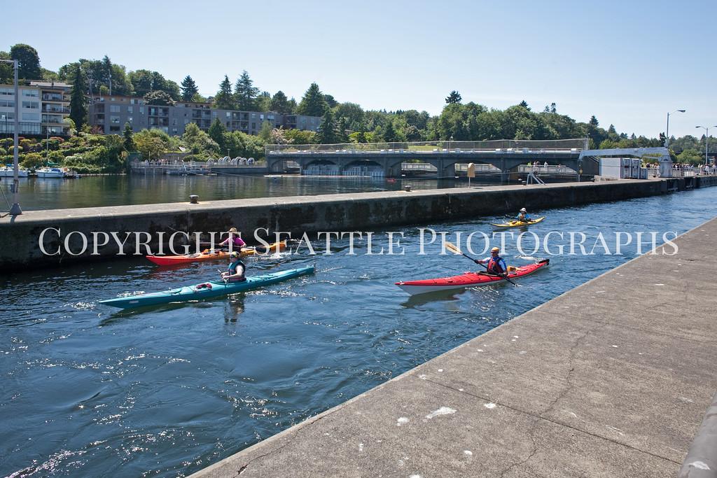 Ballard Locks Boats 115
