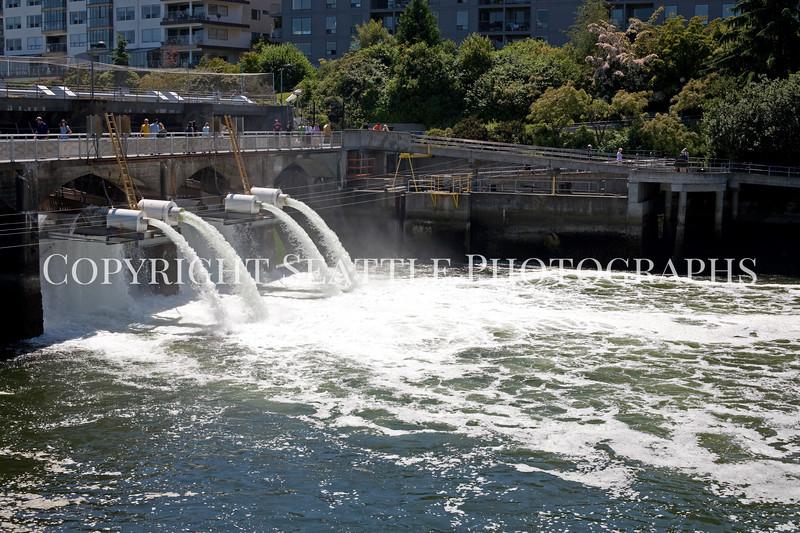 Ballard Locks Spillway 110