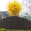 """Garden Area Outside """"Sun"""""""