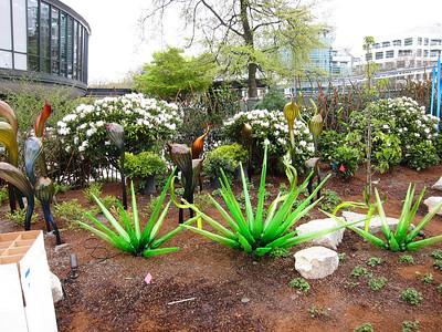 Garden Area Outside