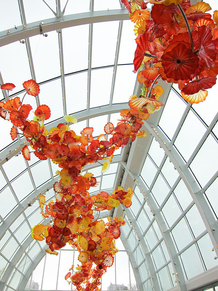 Seattle & Chihuly January 2013