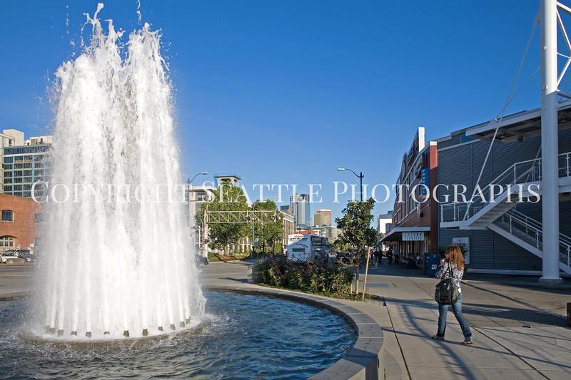 Olympic Sculpture Park 106